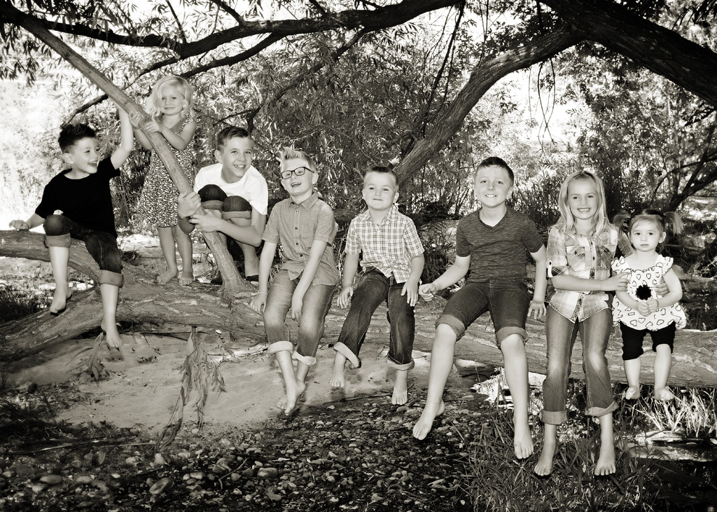 Kids sitting on Tree Branch.